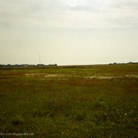 Schiermonnikoog 2004_11