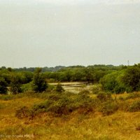 Schiermonnikoog 2004_19