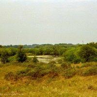 Schiermonnikoog 2004_20