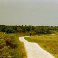 Schiermonnikoog 2004_2