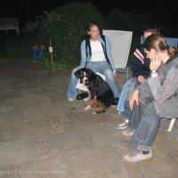 Schiermonnikoog 2005_6