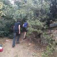 Sommercamp 2015_29
