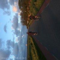 Schiermonnikoog 2016_16